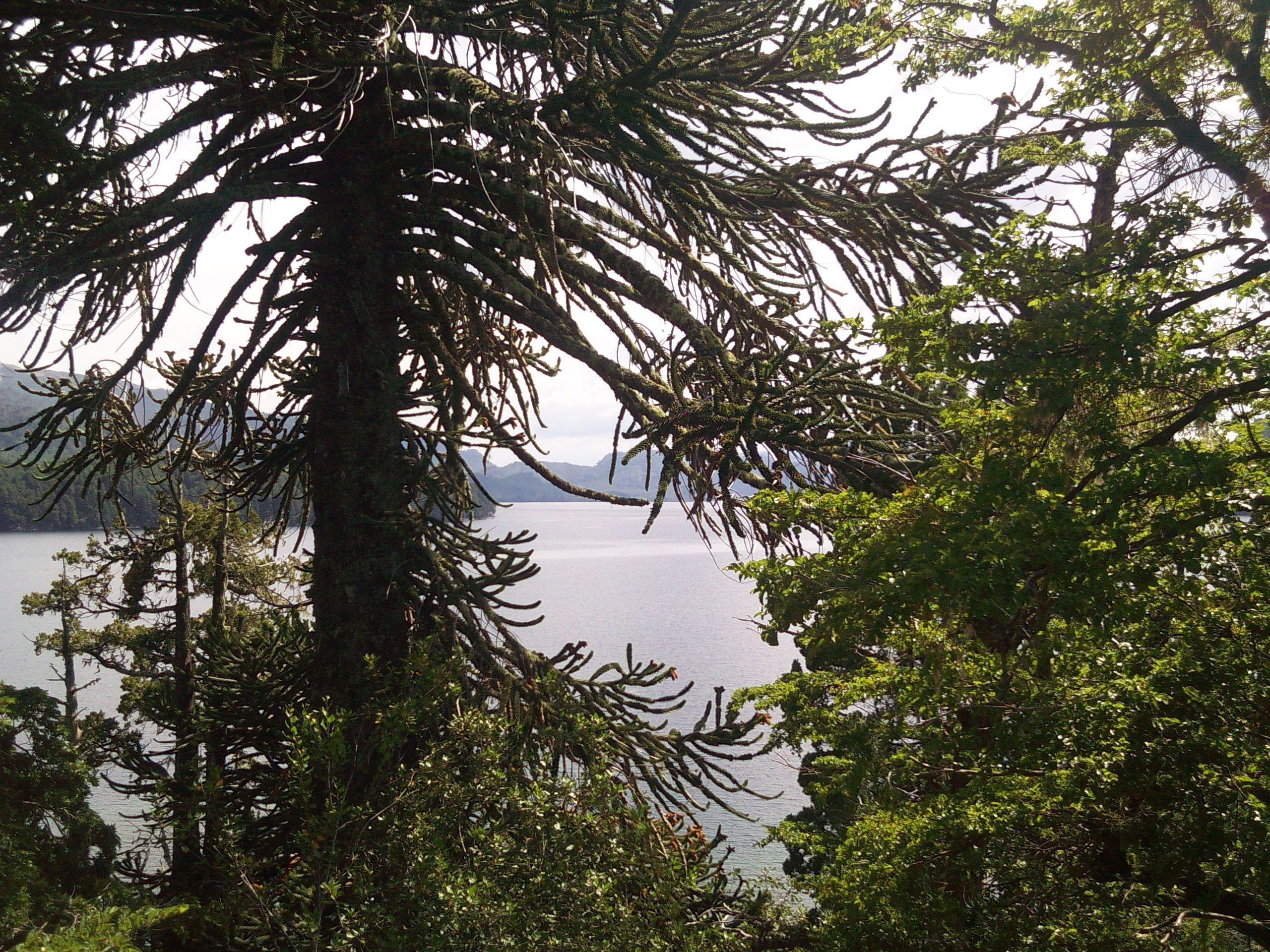 Lago Moquehue, Neuquén