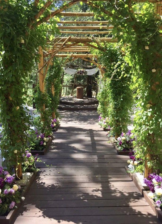Hidden Creek Forest Wedding Venue in Lake Arrowhead, CA ...
