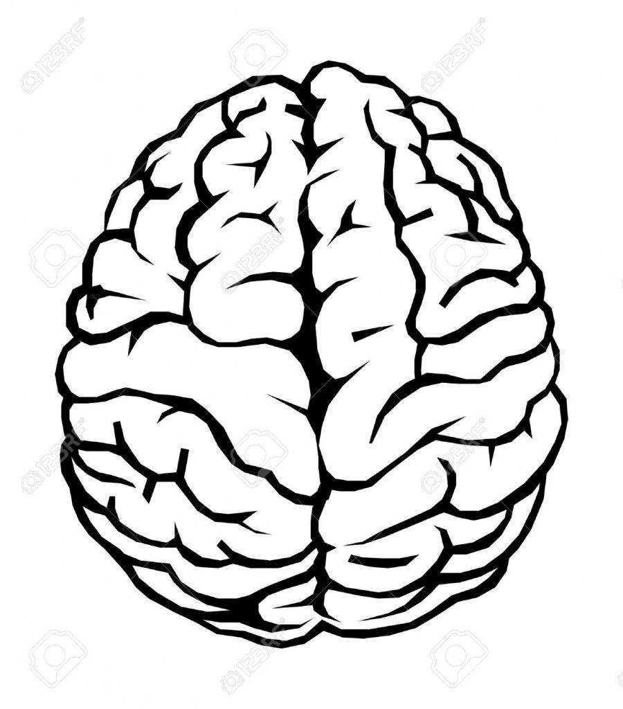 more brain clipart [ 900 x 1024 Pixel ]