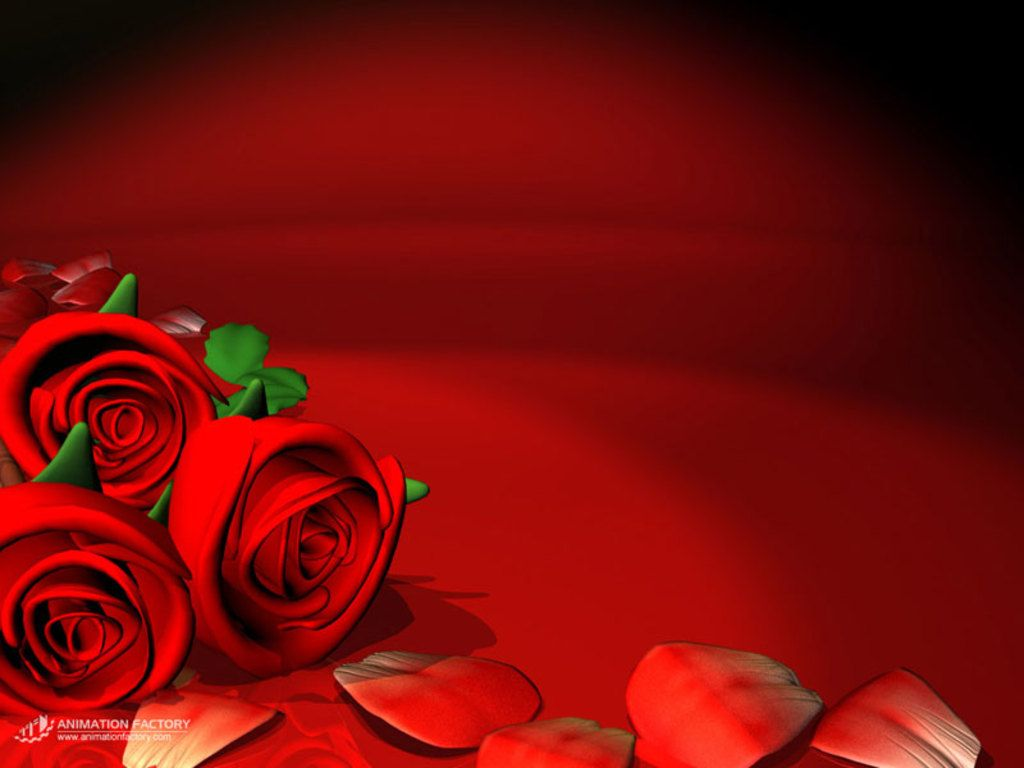 Red Flowers Wallpaper Background Red Roses Wallpaper Rose