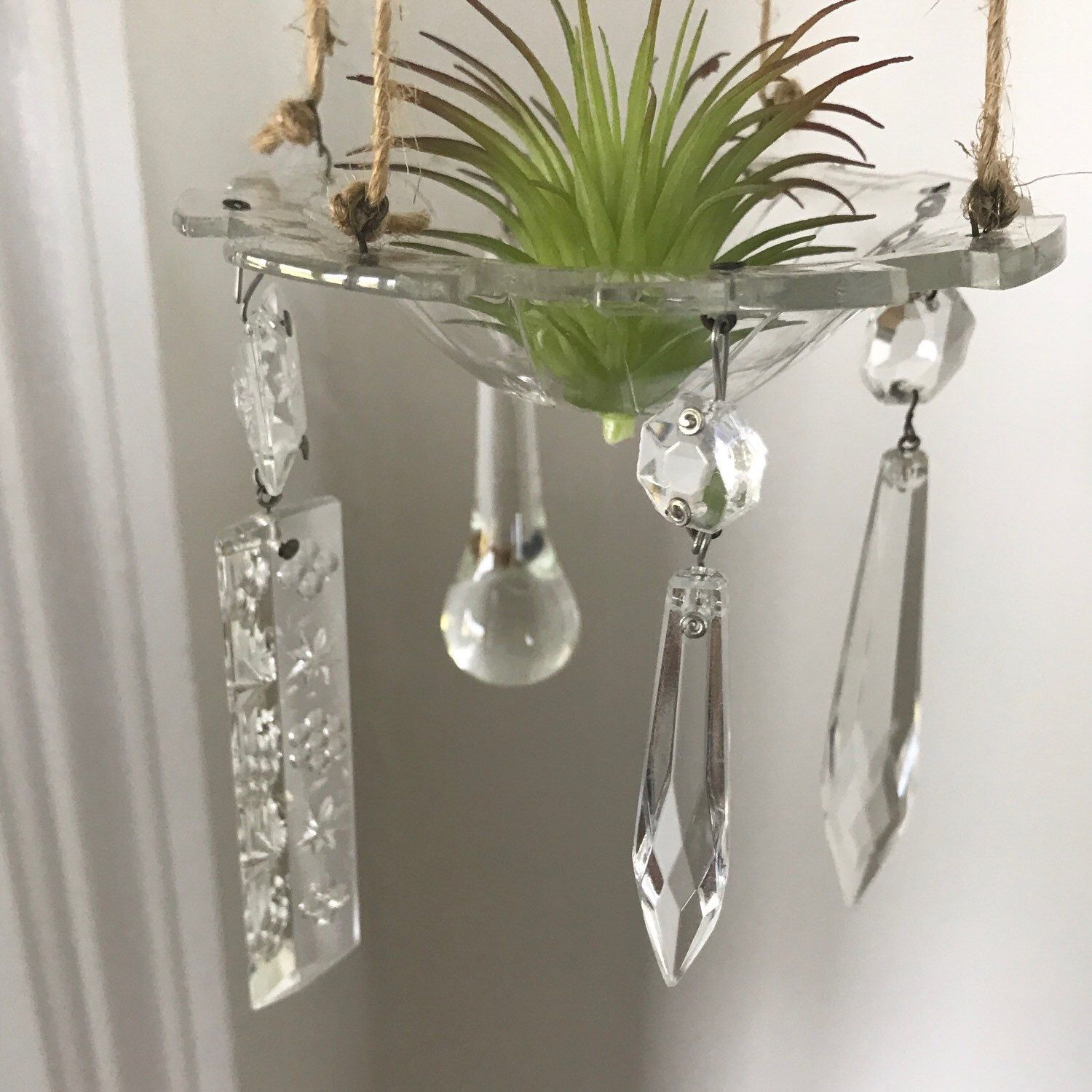 New item added to the shop today vintage chandelier air plant new item added to the shop today vintage chandelier air plant holders aloadofball Images
