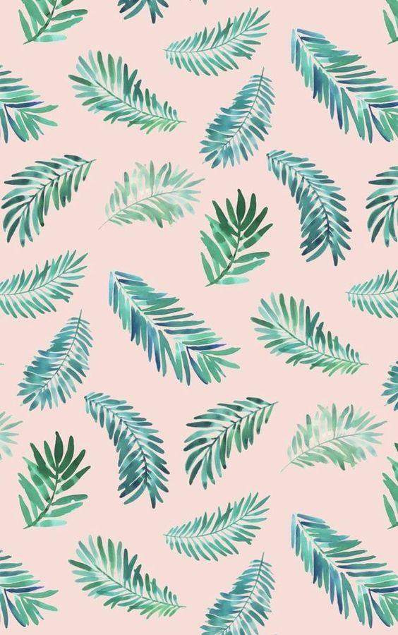 Iphone Wallpapers Summer Wallpapers Wallpaper Iphone Tumblr Wallpaper Iphone Summer Pretty Wallpapers Plain Wallpaper Iphone