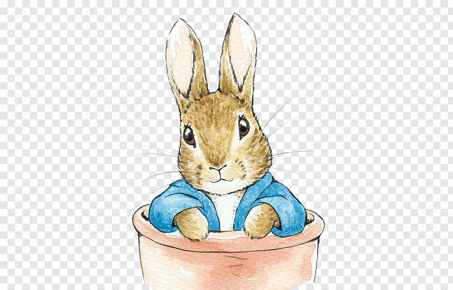 Snowshoe Hare Clip , Free Transparent Clipart - ClipartKey