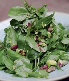 Watercress, pistachio & orange blossom salad | Yotam Ottolenghi (ph: Jonathan Lovekin)