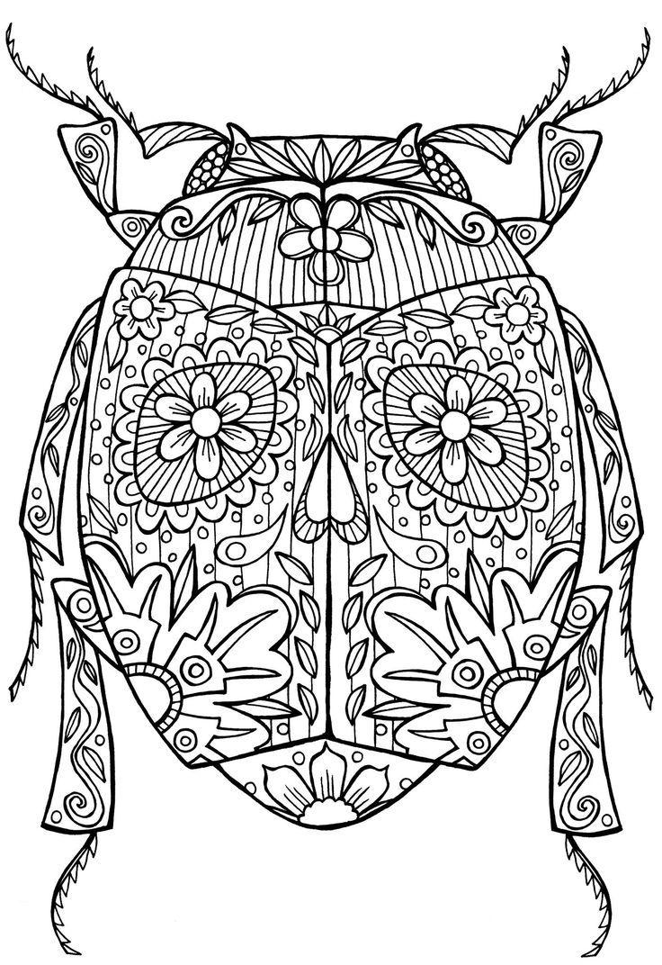 Beetle Bug Abstract Doodle Zentangle Coloring Pages Colouring
