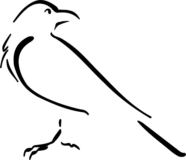 a8cc46828418a raven drawing outline | print | Raven tattoo, Crows drawing, Raven