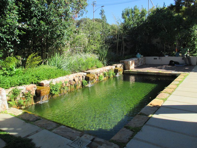 Private Home Southern Suburbs Cape Town South Africa Natural Pool Natural Swimming Pools Swimming Pools