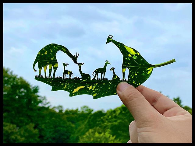 リト さん の 切り 絵 【公式サイト】LITTLE ARTIST リトルアーティスト