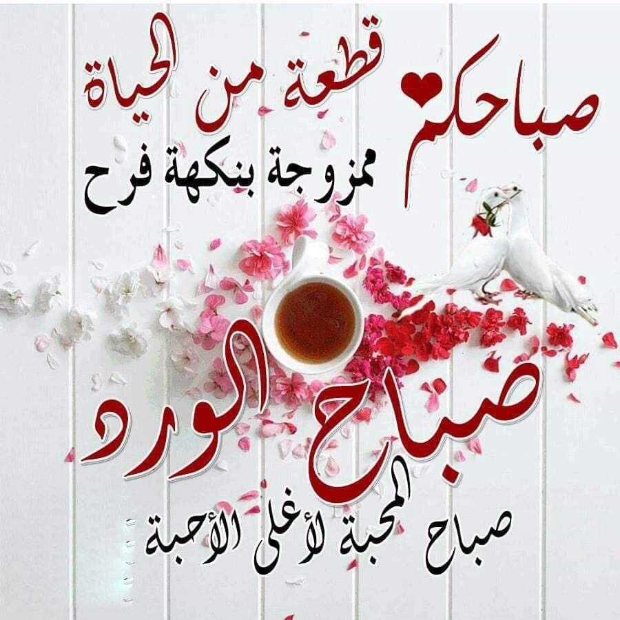 صبــاح مشـرق كـنور الشمس الساطع صبـاح ملـون بألوان الزهــور الجميلـة صبـاح السعـادة والمح Beautiful Morning Pictures Good Morning Arabic Good Morning Gif