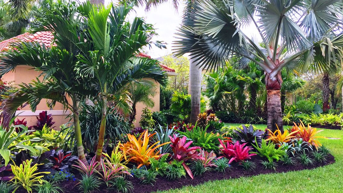 designing a colorful landscape despite a blend of shade on attractive tropical landscaping ideas id=93320