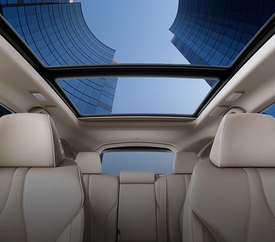 2020 Acura RDX Overview Panoramic Moonroof In 2020