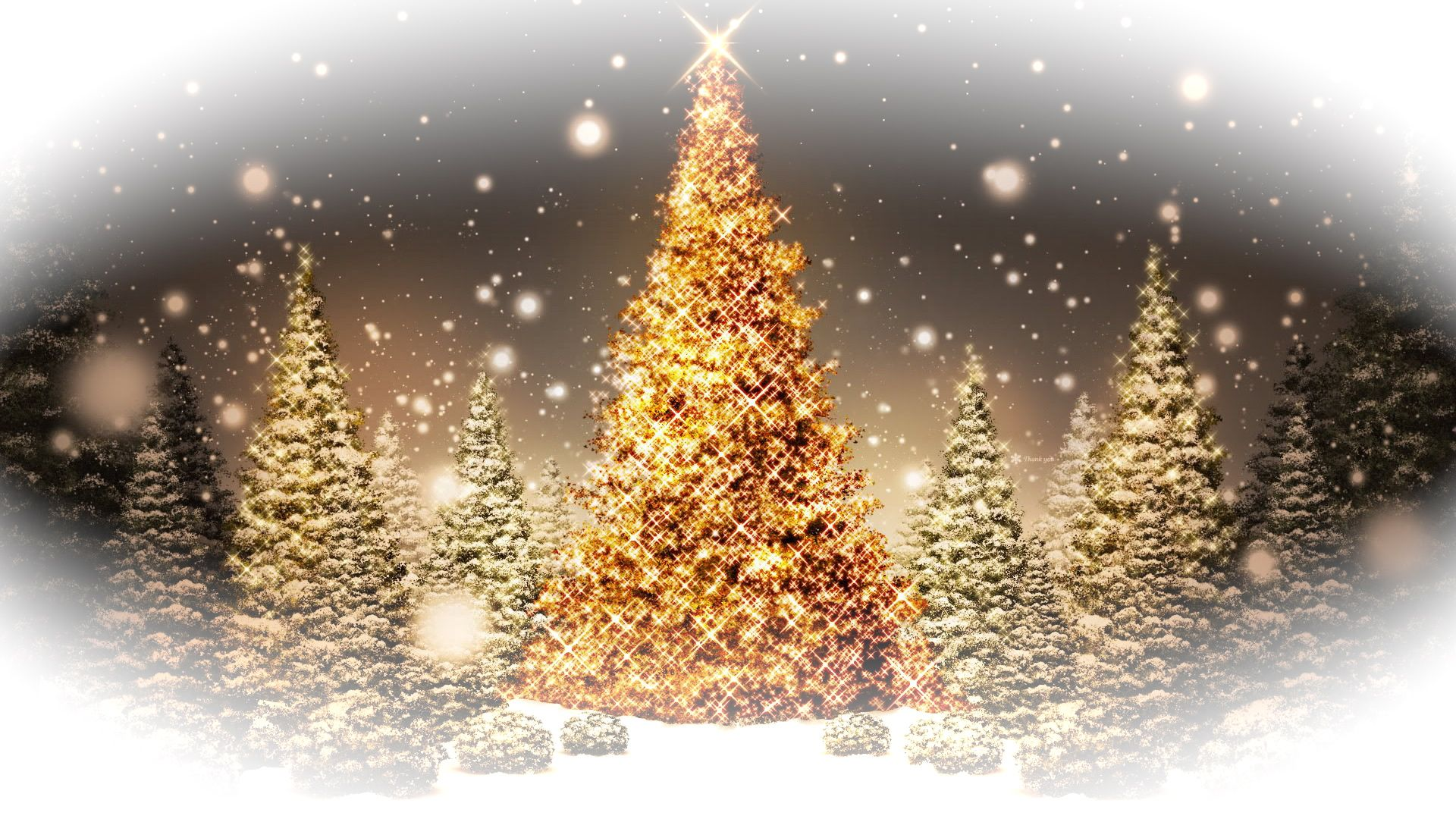 collection of beautiful christmas lights wallpapers let your favorite desktop get lighted up with beautiful wallpapers of christmas lights