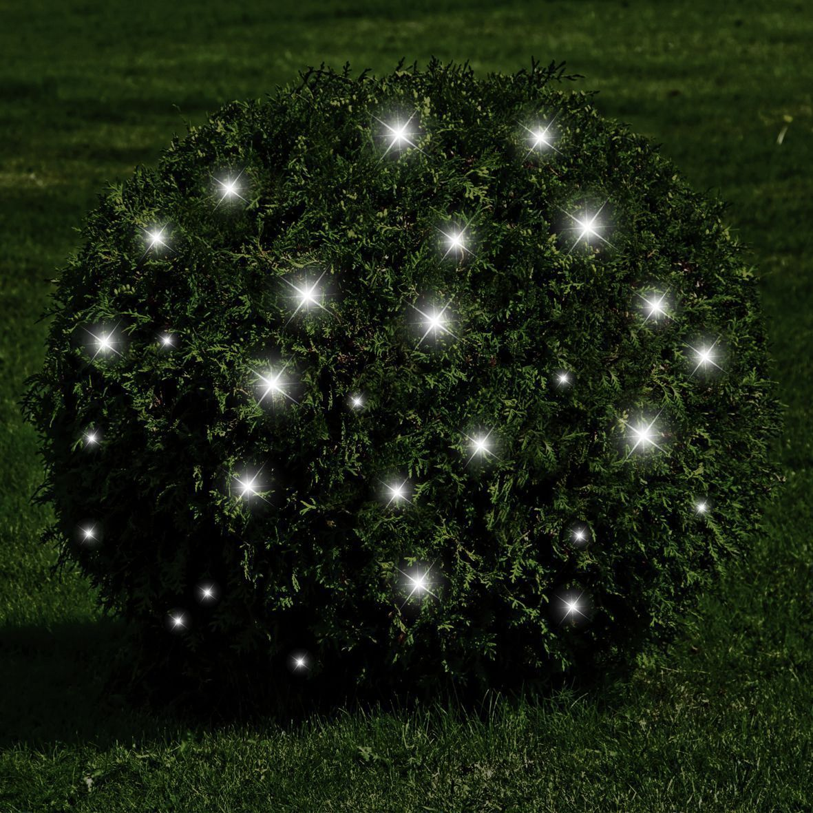 Pin on Garden Illumination