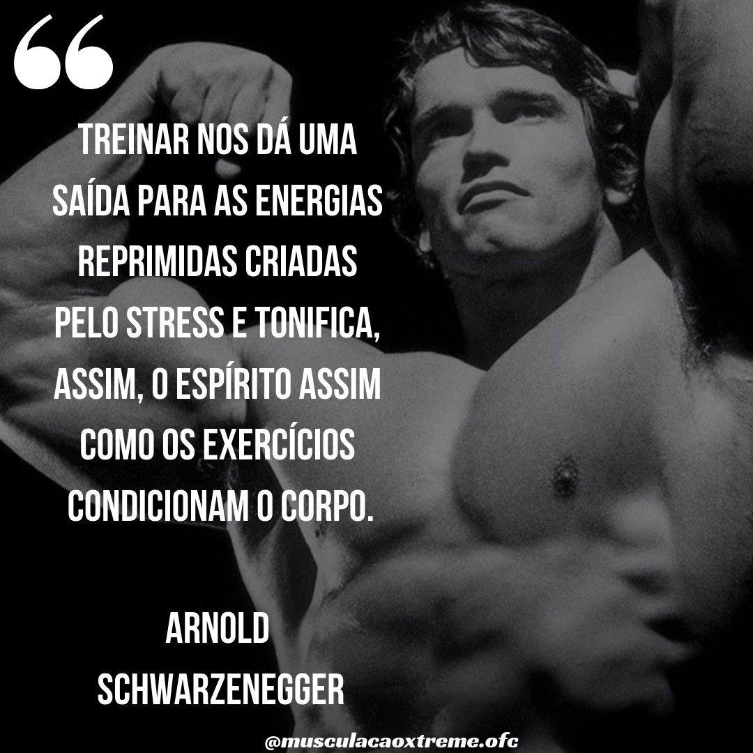 Sábias Palavras Do Mestre Arnold Schwarzenegger Siga No