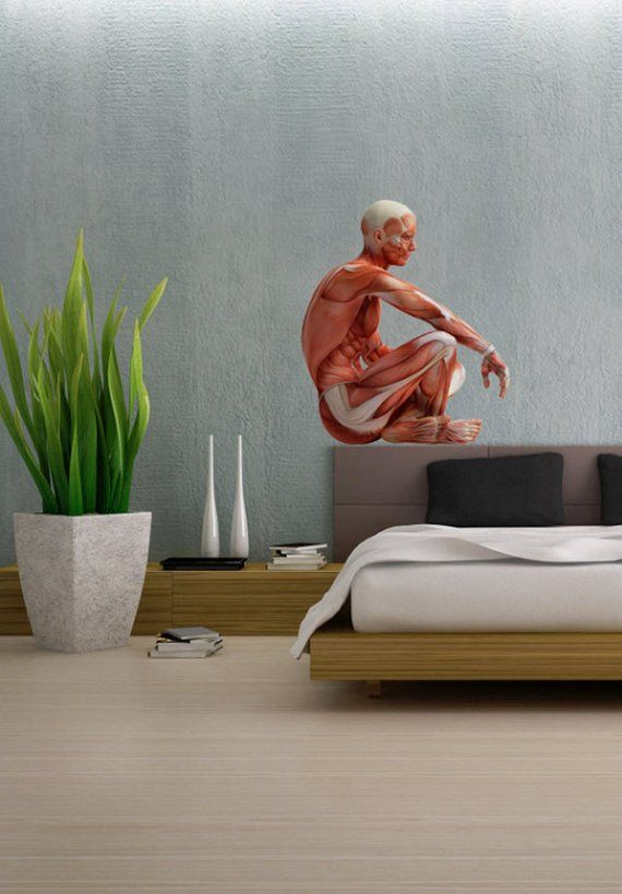 sitting down x-ray human body people - full color wall decal vinyl