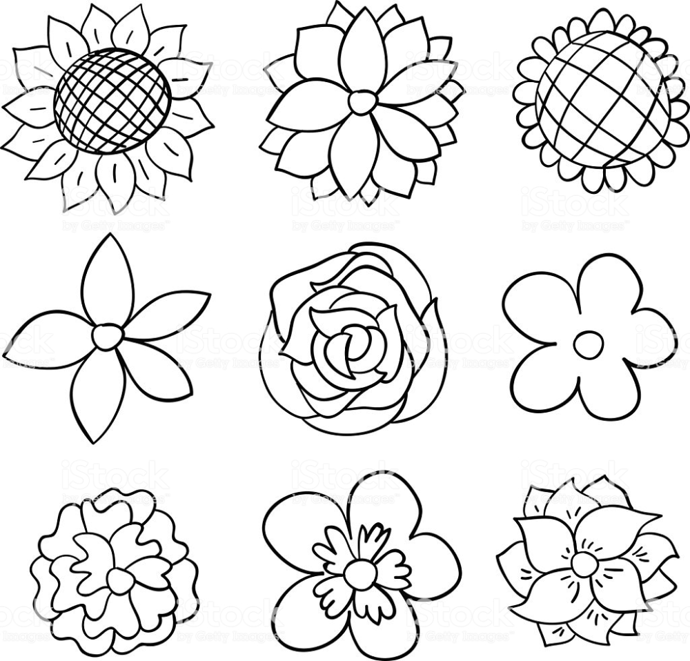 Sketch Drawing Of Flowers High Resolution Jpg File Included Black And White Cartoon Cartoon Flowers Flower Coloring Pages