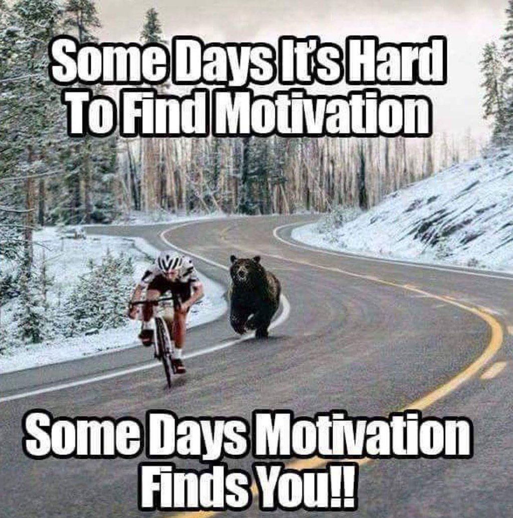some days it s hard to motivation some days motivation finds some days it s hard to motivation some days motivation finds you living through