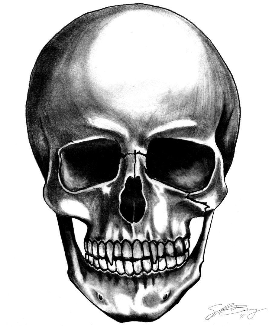 Vampire Skull by Fusedviantart on deviantART