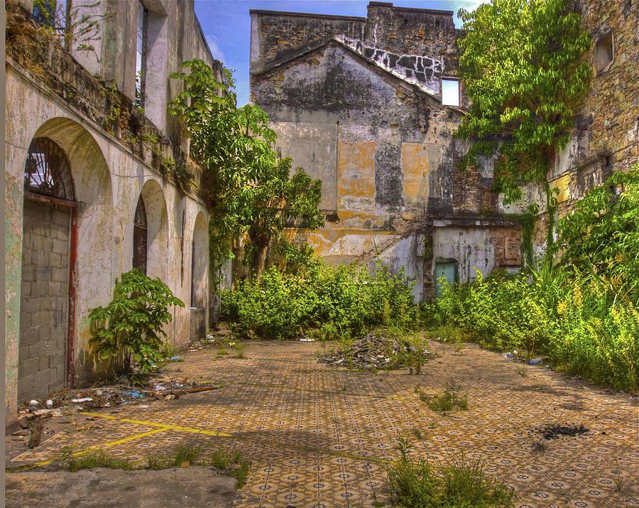Urban Jungle Inspiratie : Afbeeldingsresultaat voor urban jungle inspiratie pinterest