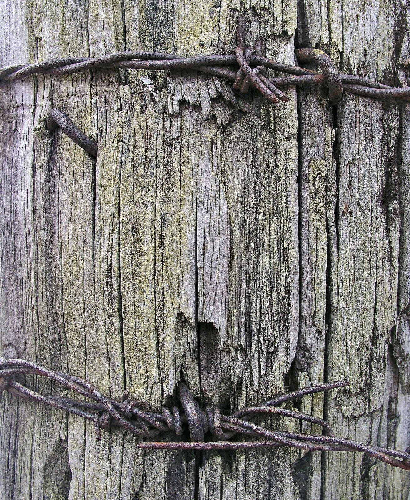 barbed wire stapled onto post ideas