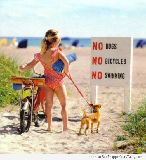 """A little girl in bathing suit with her bike and her dog arrives at the beach only to find a sign that reads """"No Dogs, No Bicycles, No Swimming"""""""