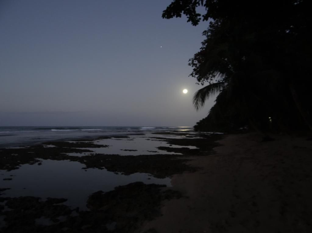 Moonlight over Salsa Brava