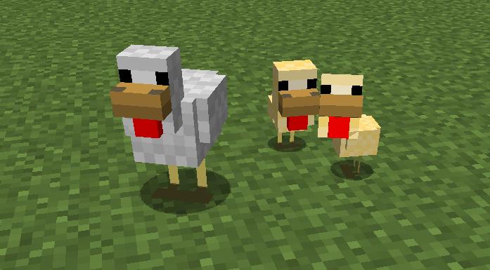 Minecraft Baby Chicken   Minecraft Forums   4SARE   Baby chickens