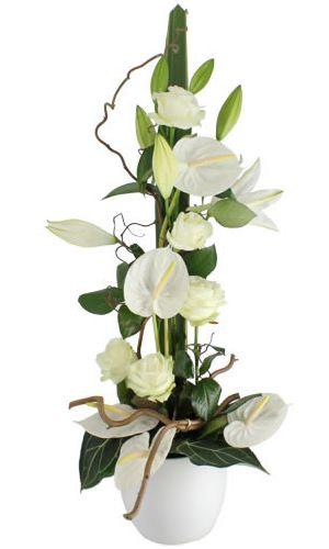 aube compositon florale pinterest fleurs composition florale et arrangements floraux. Black Bedroom Furniture Sets. Home Design Ideas