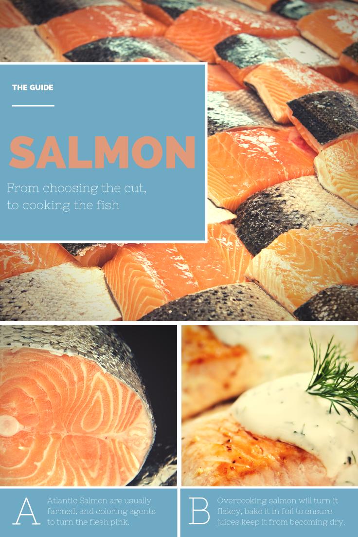 Abi salmon (abi_salmon) on Pinterest