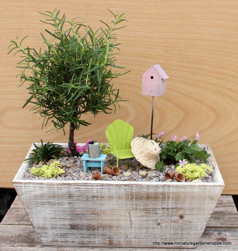 Too cute ~~~MIni Garden by miniaturegardenshoppe #Garden
