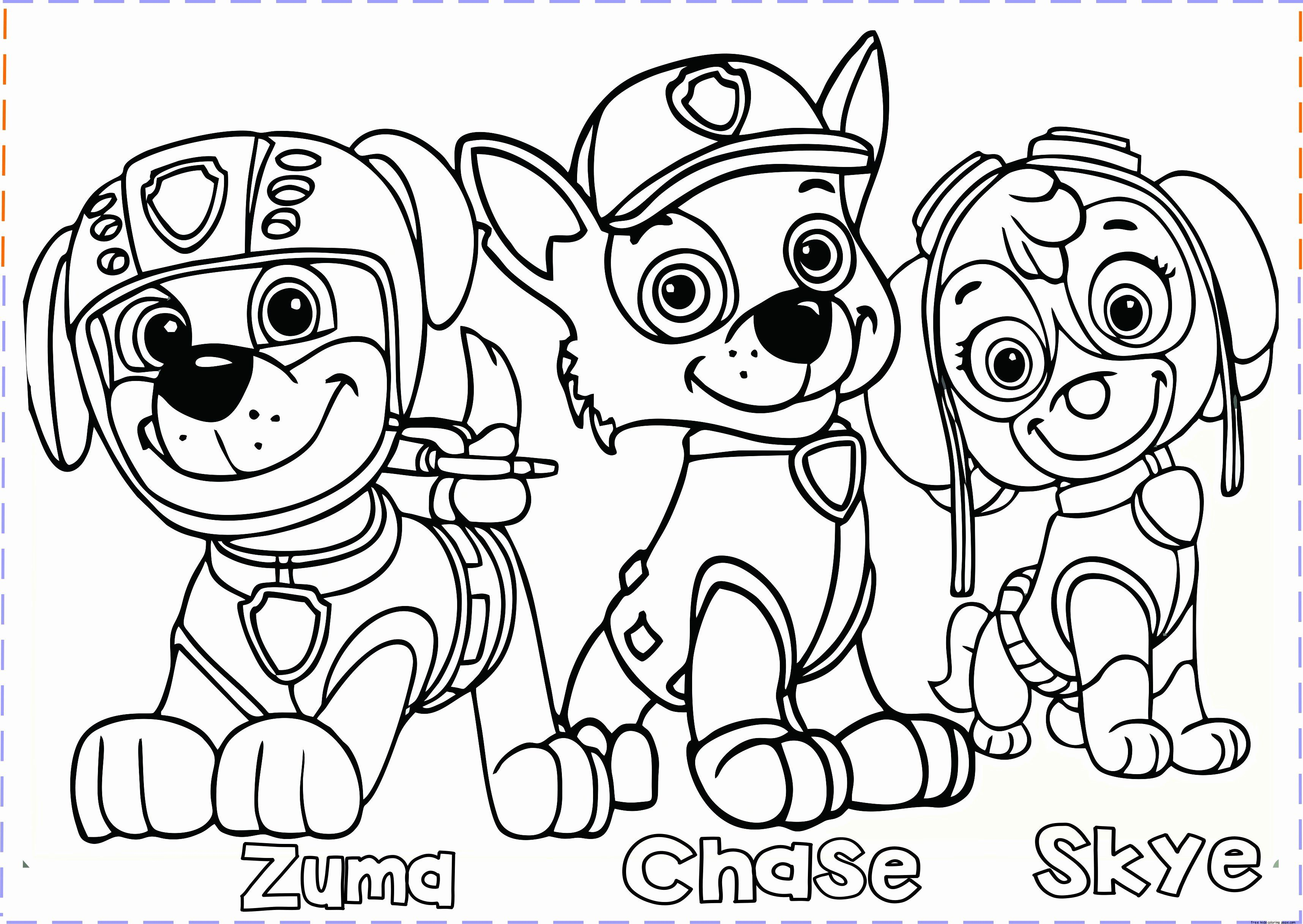 Coloring Page Paw Patrol Unique Paw Patrol Coloring Pages Free