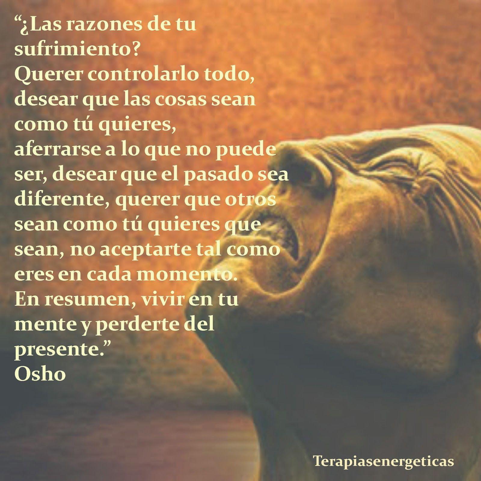 Frases Osho Amor Buscar Con Google Frases Osho Mindfulness Y