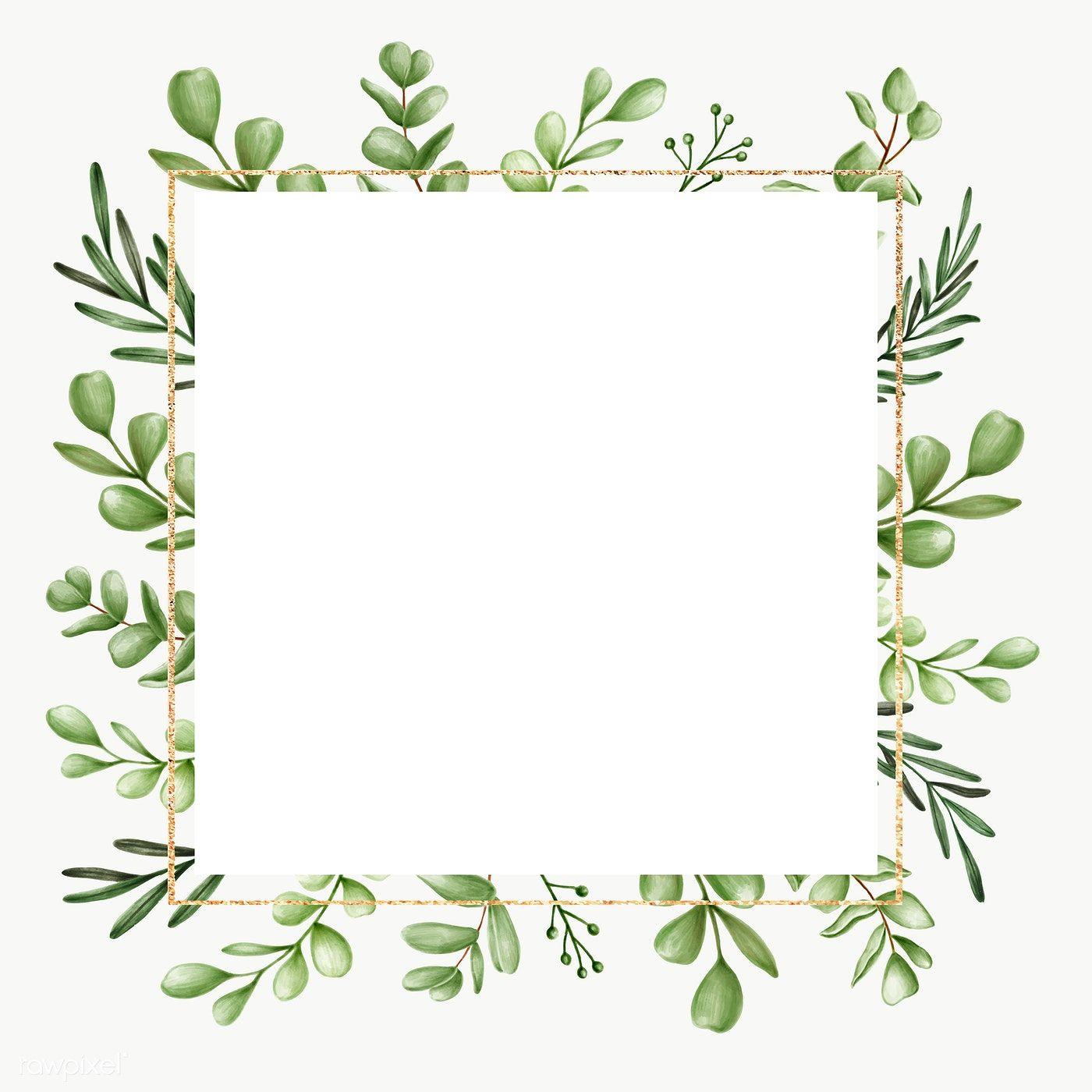 Download Premium Png Of Green Floral Frame Transparent Png 2032804 Green Leaf Background Floral Background Floral Border Design