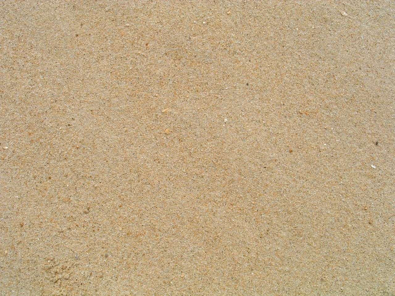 sand texture sand texture sand beach background
