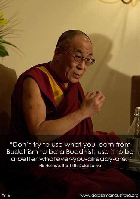 dalai lama quote on buddhism and how everyone can take something from it its not a religion