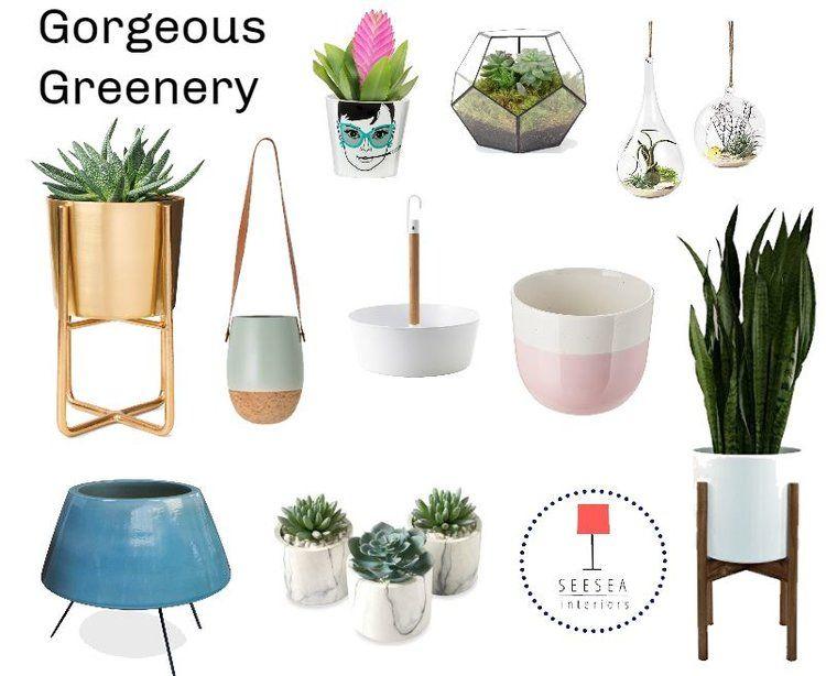 Going Green | plants | Plants, Go green, Green