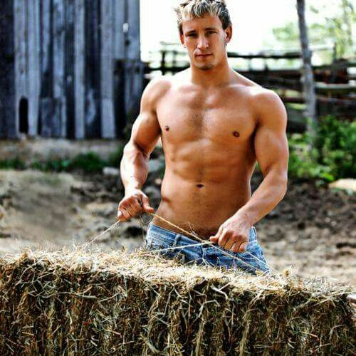 Sexy Boys On The Hay