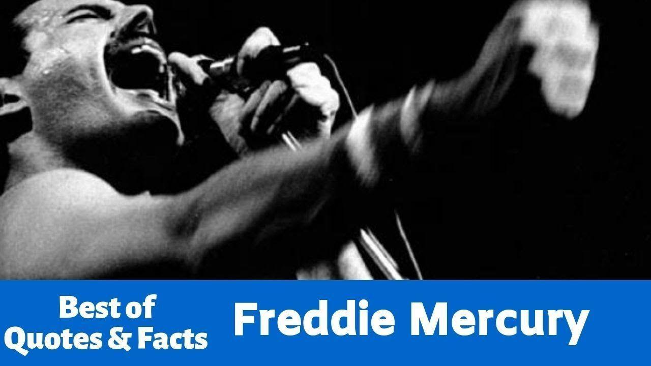 Freddie Mercury Quotes [2019] #freddiemercuryquotes Freddie Mercury Quotes [2019] #freddiemercuryquotes Freddie Mercury Quotes [2019] #freddiemercuryquotes Freddie Mercury Quotes [2019] #freddiemercuryquotes