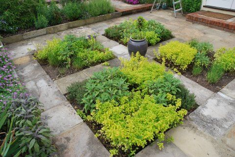 Herb Garden by Nigel L Philips Garden Design wwwnigelphilipsco