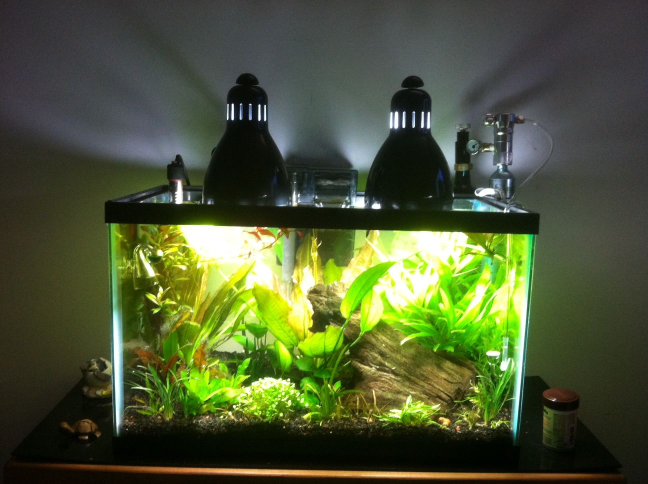 Hi Everyone Right Now I Have A 10 Gallon Planted Tank For Lighting I Have A 6500k 20w Bulb In A Desk Lamp Sitting On Planted Aquarium Light Fixtures Plants