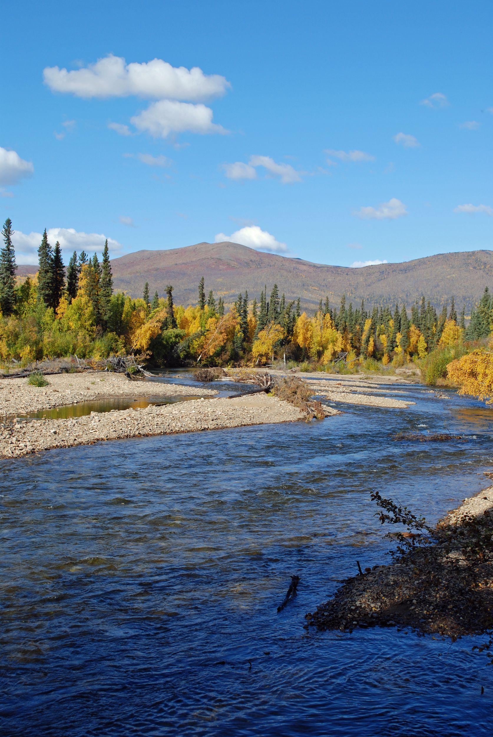 Chena River Near Fairbanks Alaska Travel