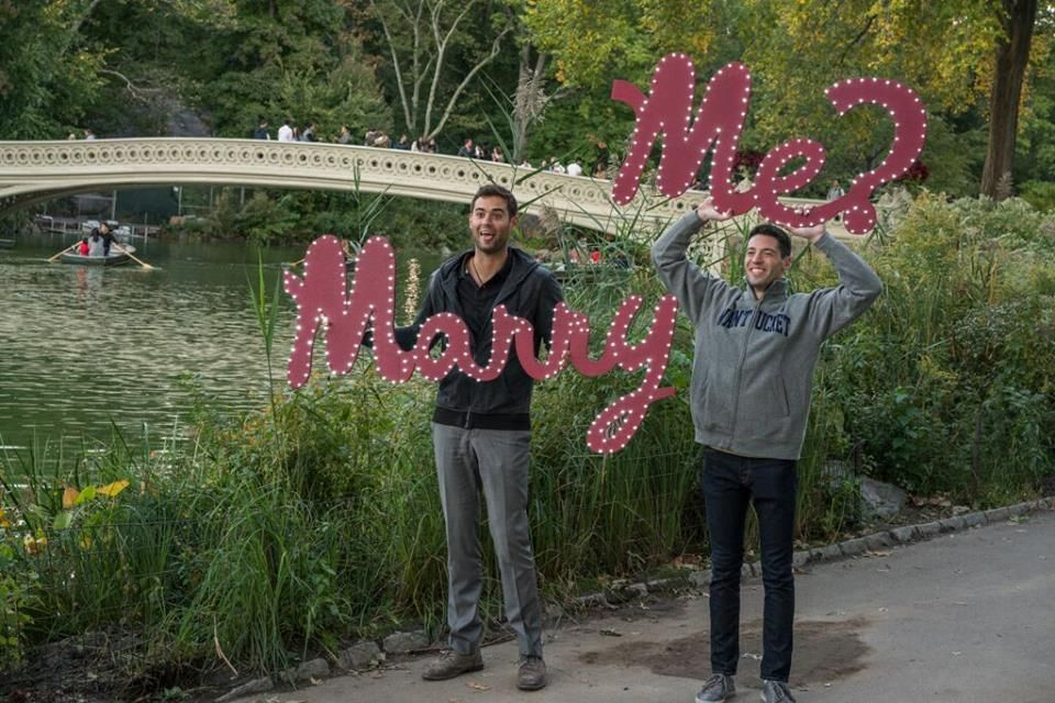 Fun And Creative Central Park Proposal New York Proposal Ideas