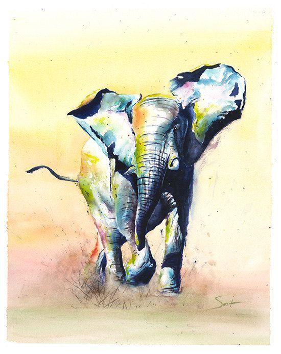Elephant Print Peinture D Elephant D Aquarelle Portrait Colore