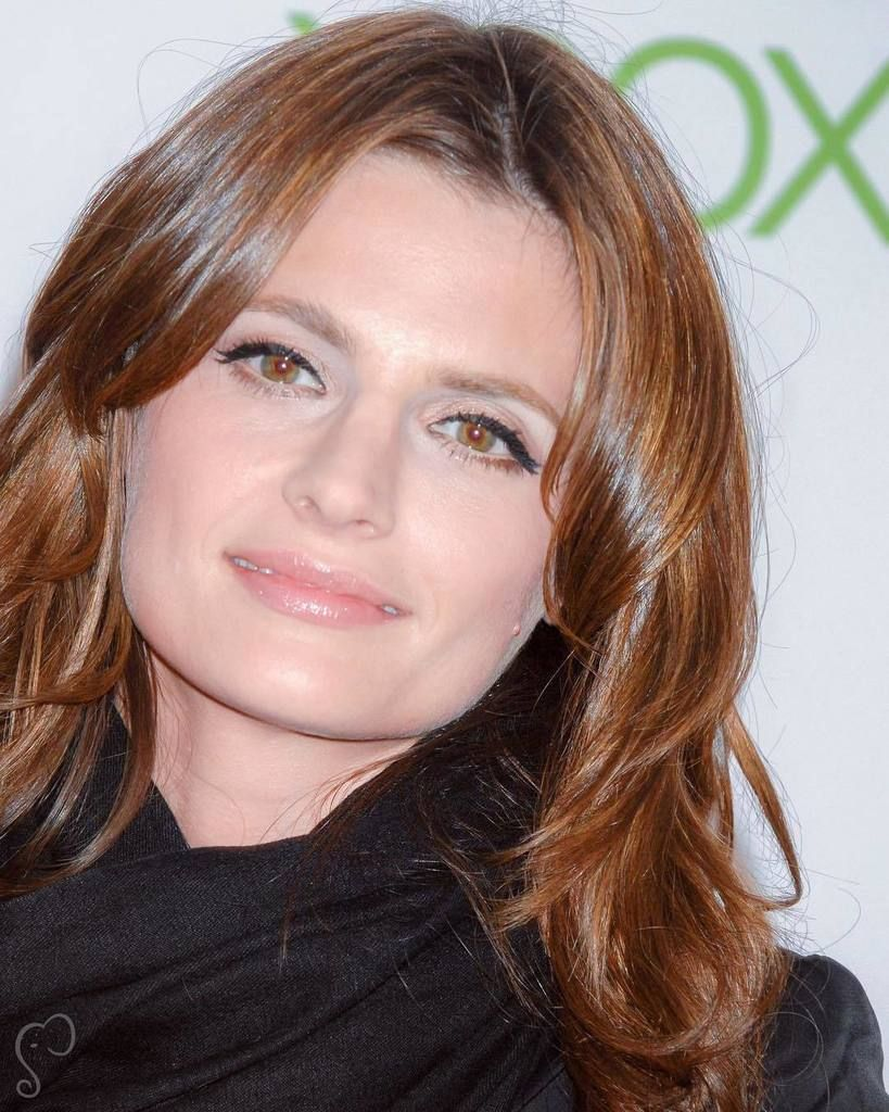 Twitter Stana Katic naked (49 photos), Topless, Paparazzi, Instagram, cleavage 2020