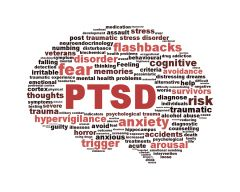 Positive effects of Craniosacral Therapy on Post Traumatic Stress Disorder Symptomology in Vietnam Combat Veterans:   https://craniosacralresearch.wordpress.com/2013/08/20/the-effects-of-craniosacral-therapy-on-post-traumatic-stress-disorder-symptomology-in-vietnam-combat-veterans/