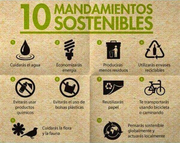 Los 10 Mandamientos Del Reciclaje Para Un Mundo Sostenible Medio Ambiente Medio Ambiente Actividades Frases Ecologicas