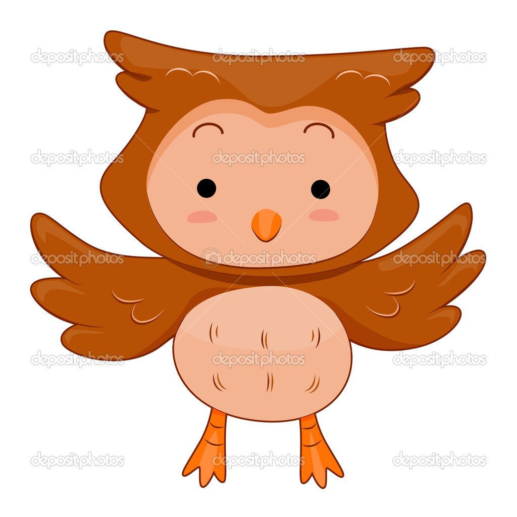 cute owls Cute Owl Stock Image Cute owl, Owl, Cute