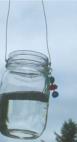 Check out this great site...  jars of water keep flys away... like the plastic bag theory, but prettier!!    the crafts | Truffles, Figs and Chicks | Page 3
