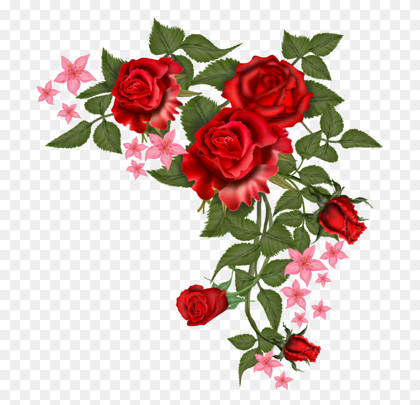 Moldura Para Fotos Png Moldura Png Para Fotos Flower Background Wallpaper Flower Png Images Flower Frame Png