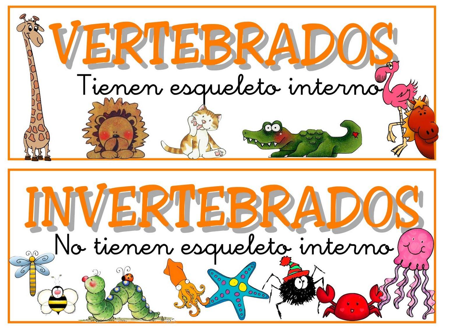 Animales Vertebrados E Invertebrados Para Colorear E Imprimir Imagui Animal Planet Animals Childrens Sheets